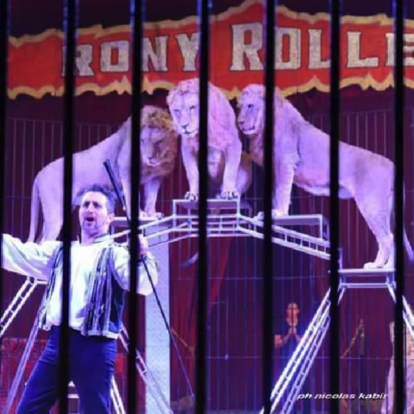 capodanno circo roma