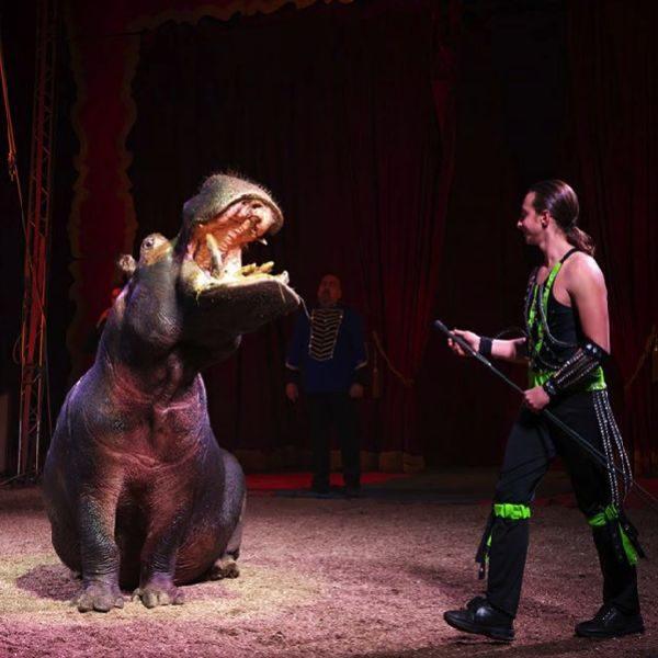 circo capodanno a roma
